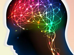 """""""脳""""すごいぞ! ひらめきと記憶の正体"""