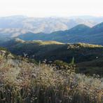 hills of santa ana