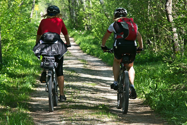 cycling-forest.jpg