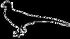 wh-bažant-ilustrace-sériová-ilustrace_cs