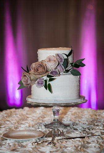 Reception (6 of 138).jpg