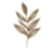 botanicals%20flower%20clipart%20files_ic