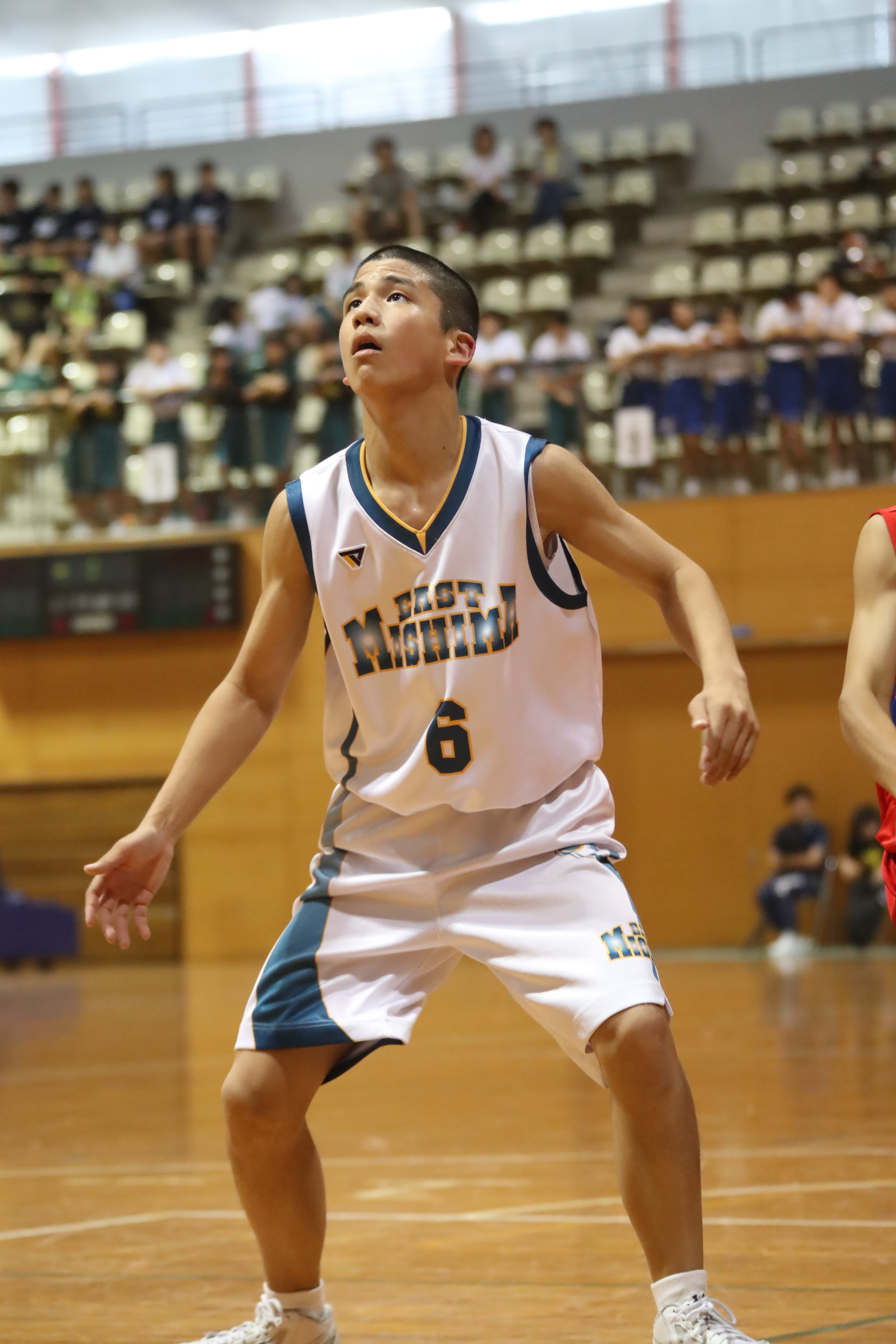 バスケット (13)