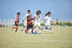mini_soccer (315)