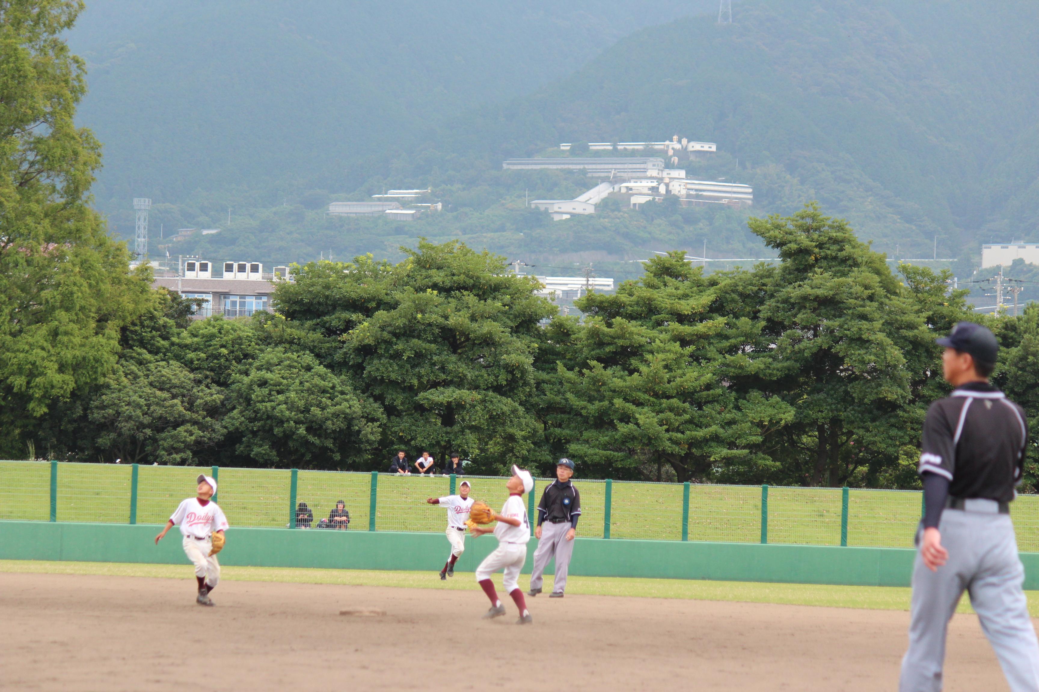 野球 (310)