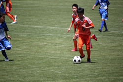 サッカー (733)