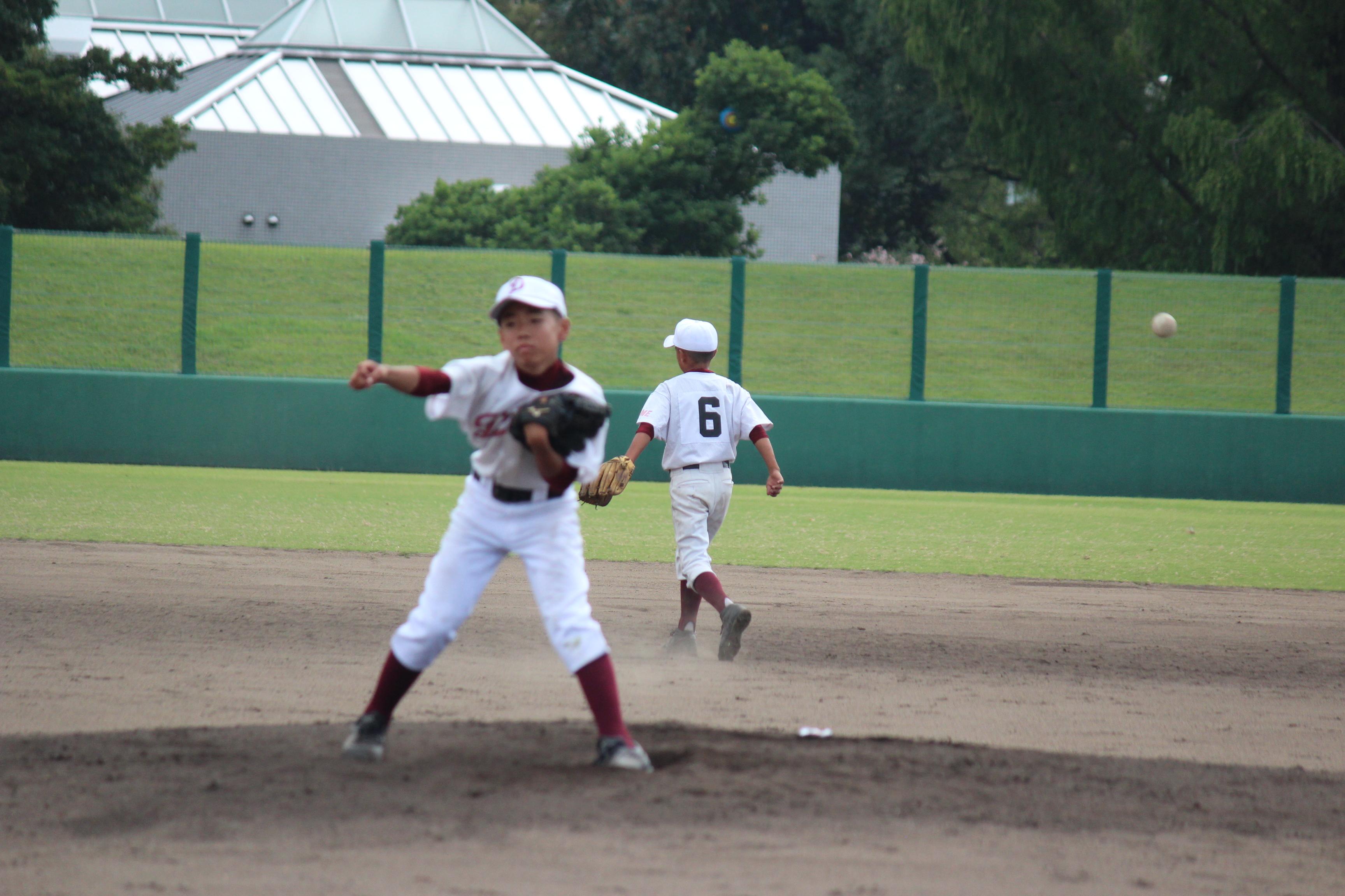野球 (879)