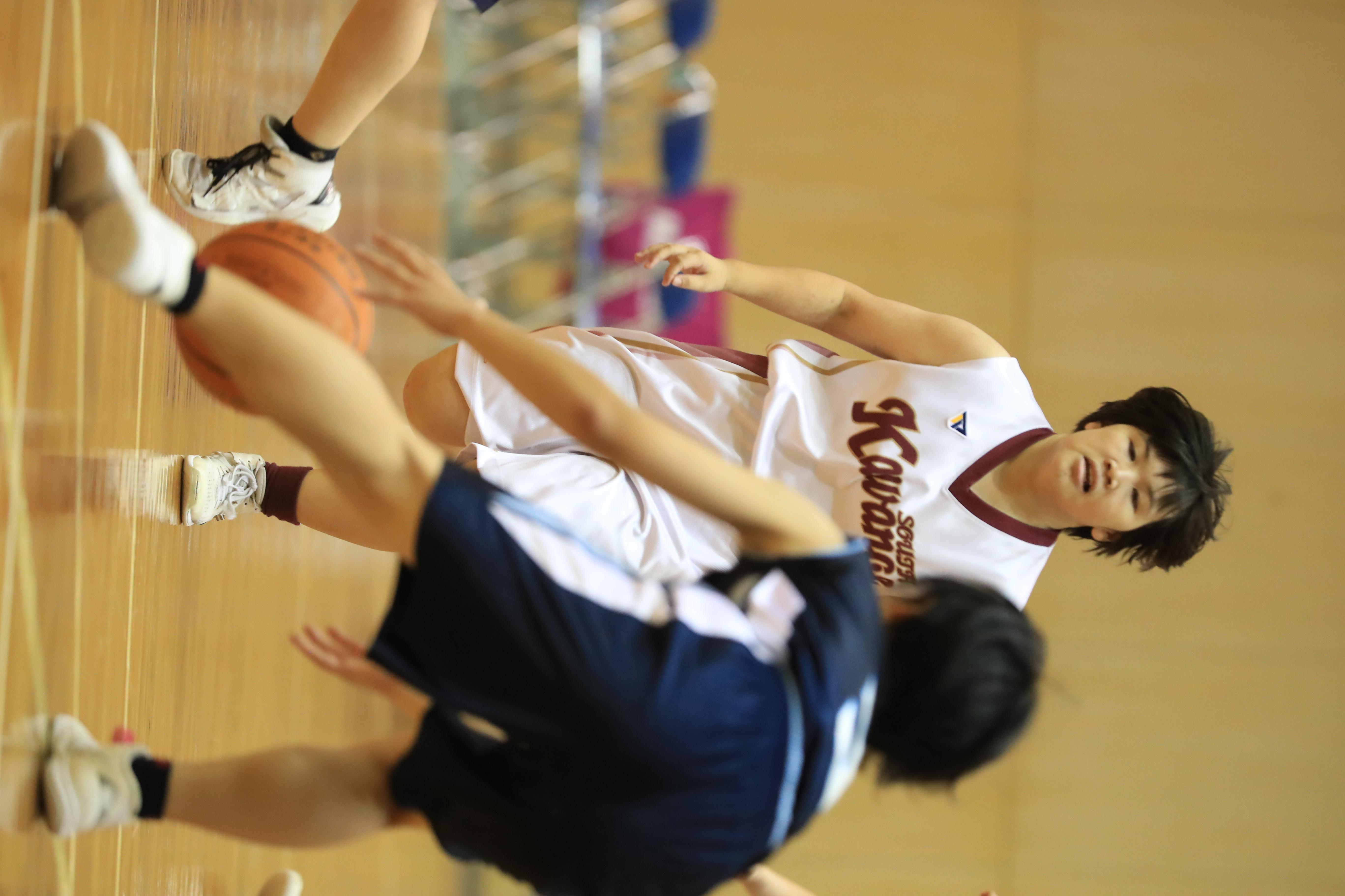 バスケット (493)