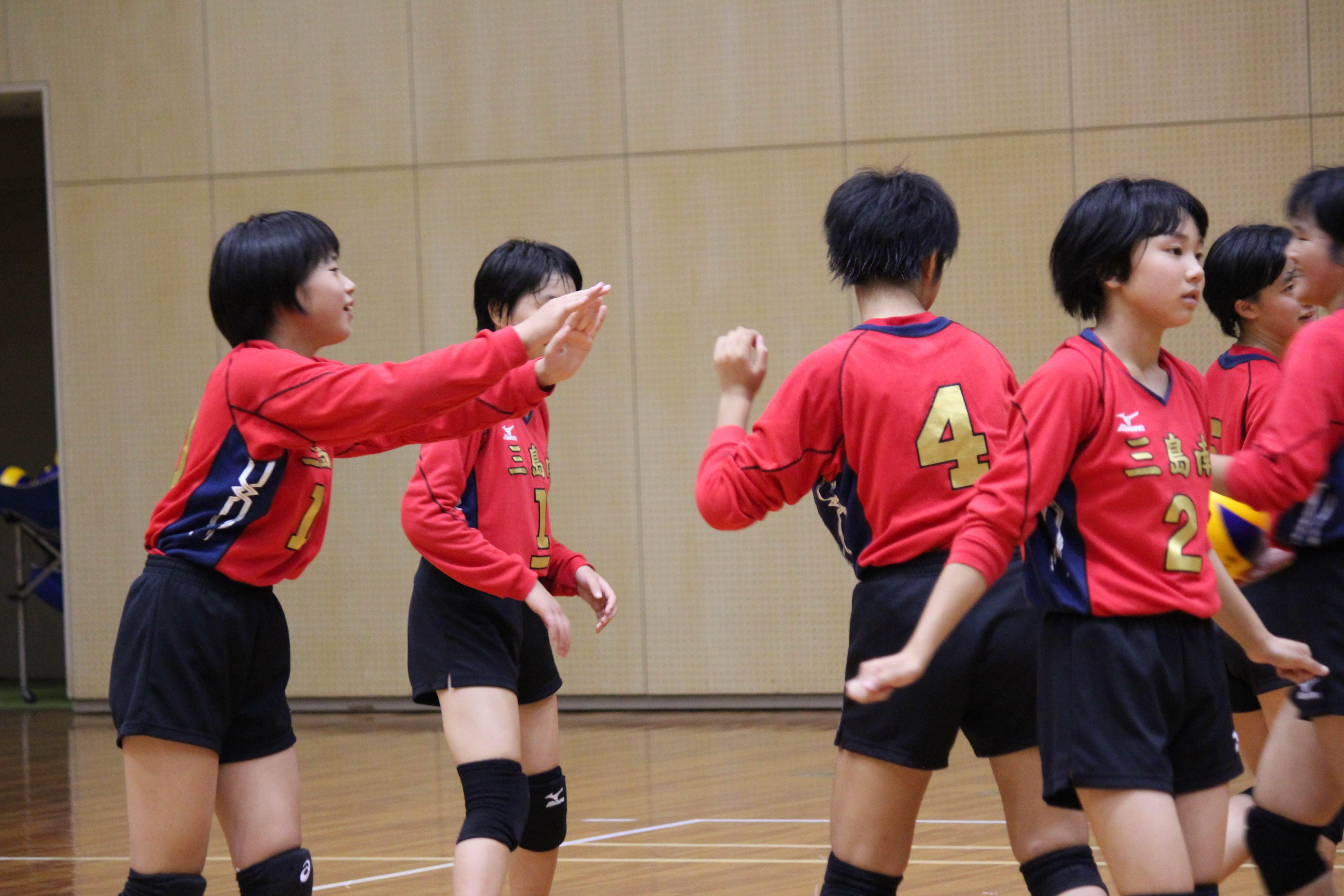 バレーボール (403)