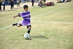 mini_soccer (248)