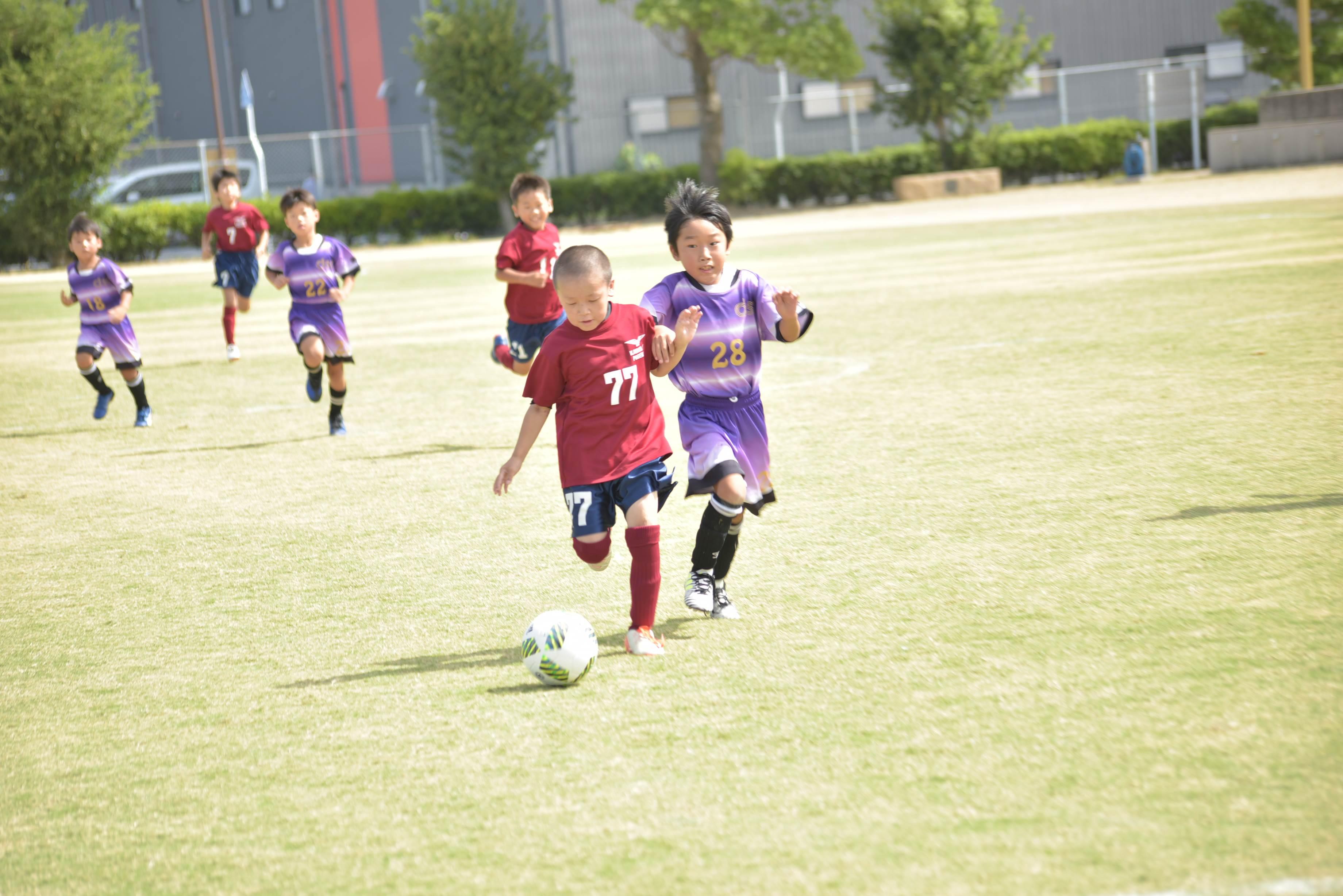 mini_soccer (585)