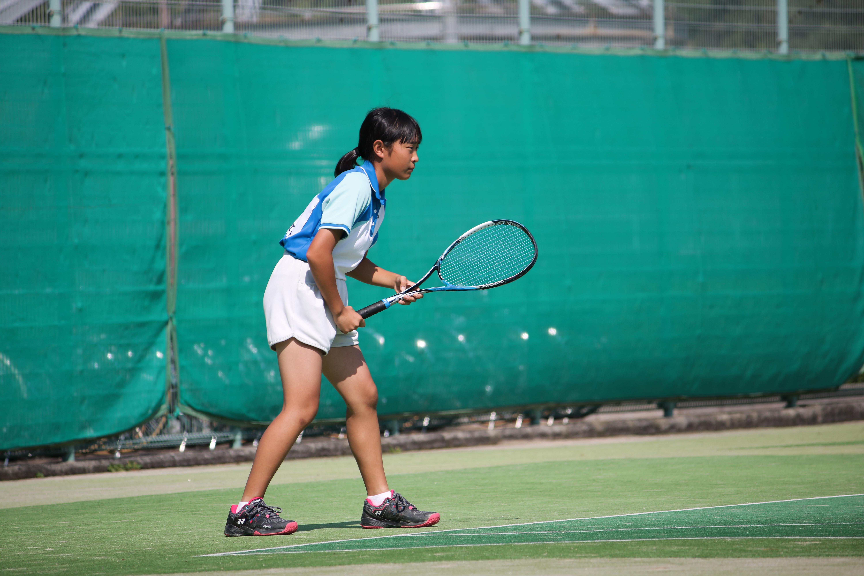 ソフトテニス(224)
