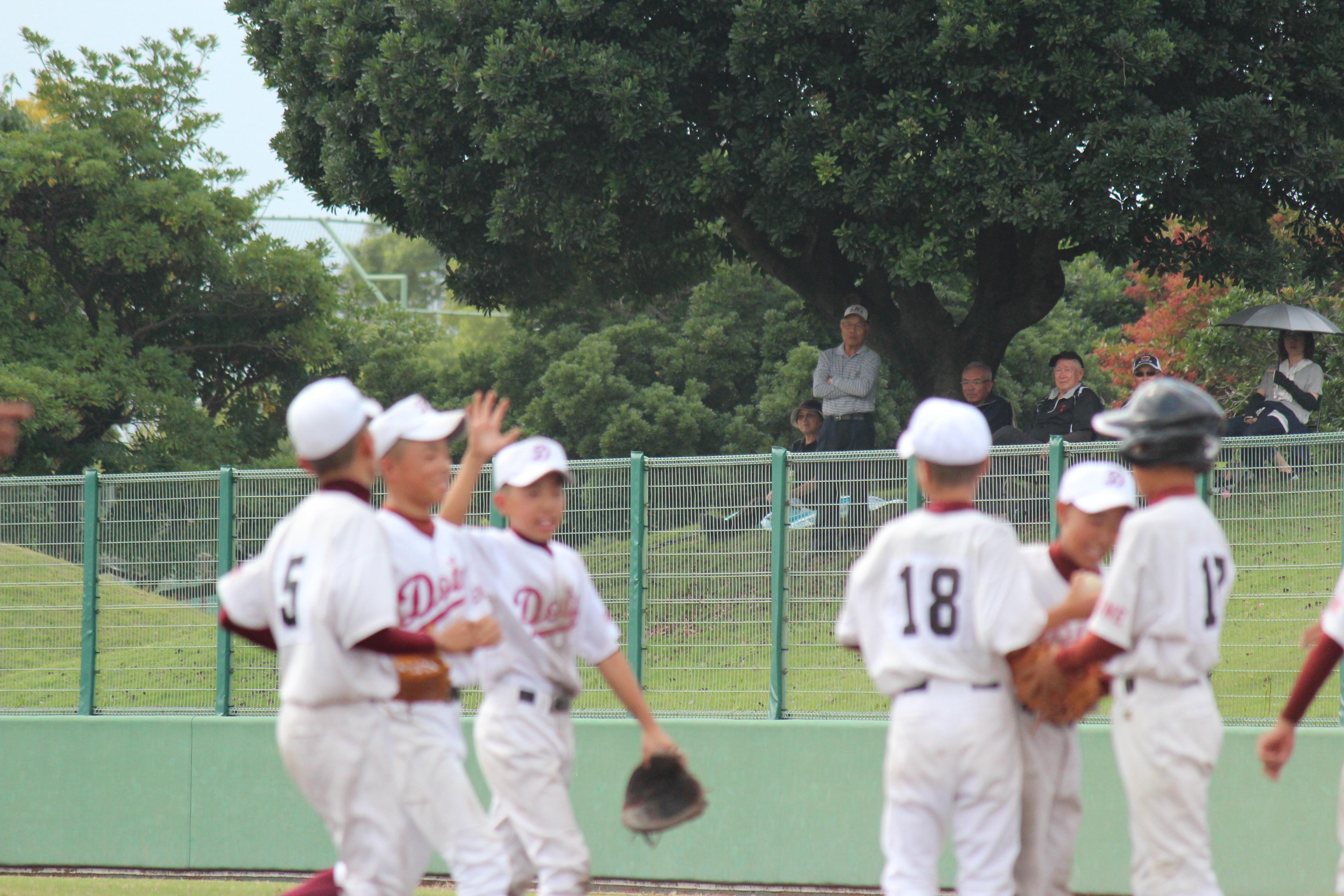 野球 (893)