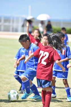 mini_soccer (513)