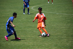 サッカー (350)