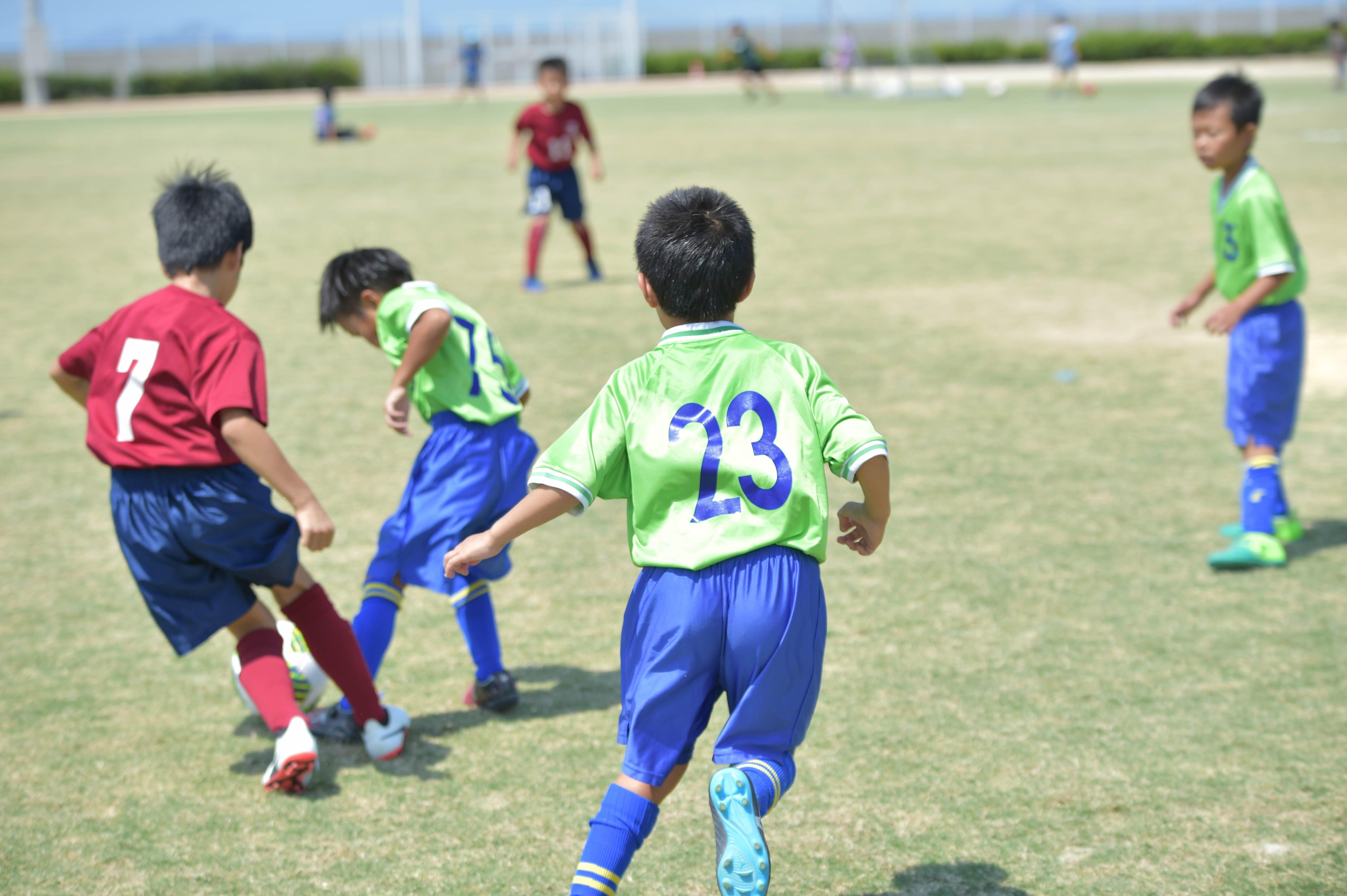 mini_soccer (459)