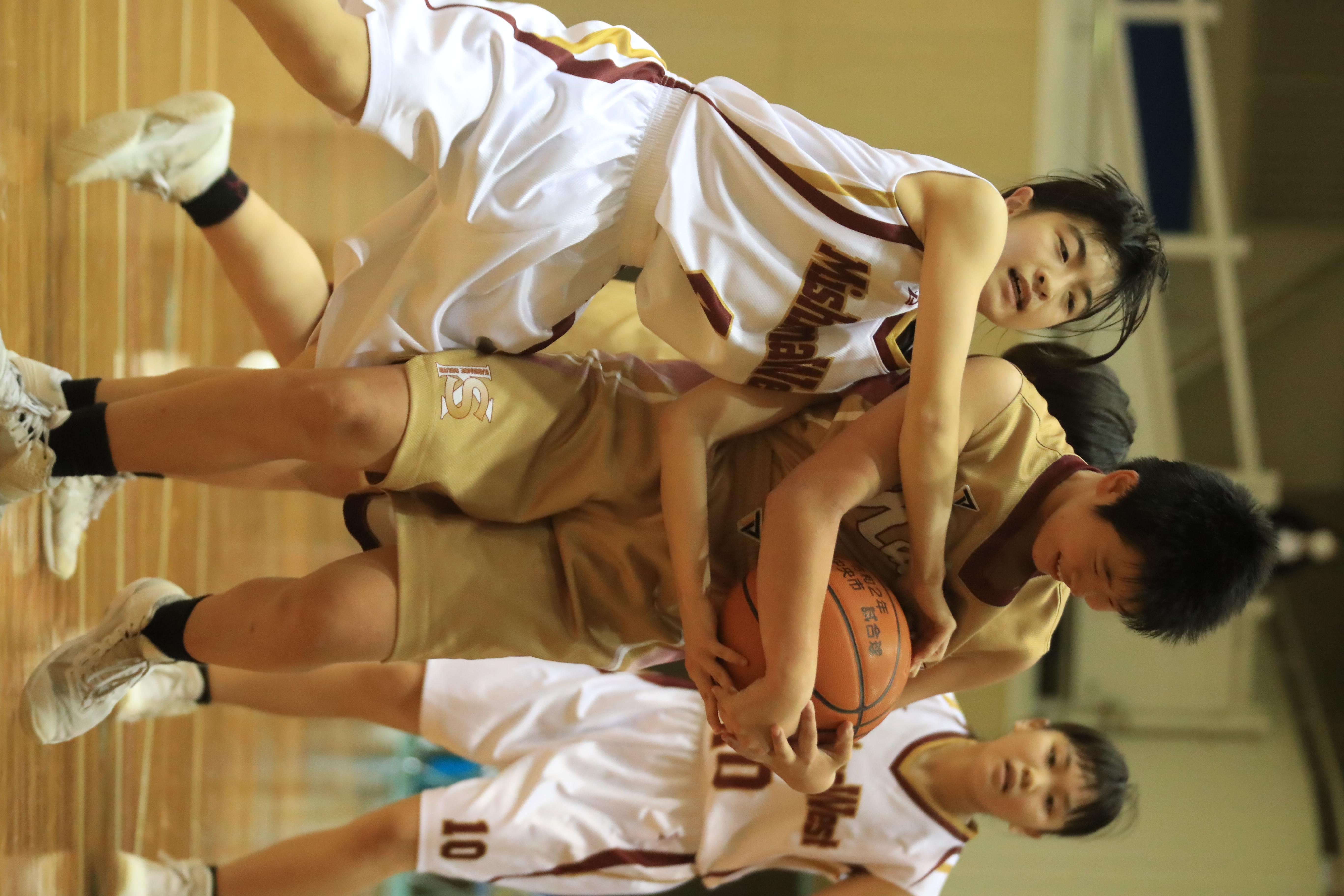 バスケット (429)
