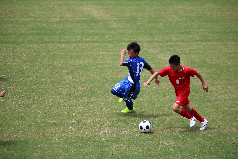サッカー (473)