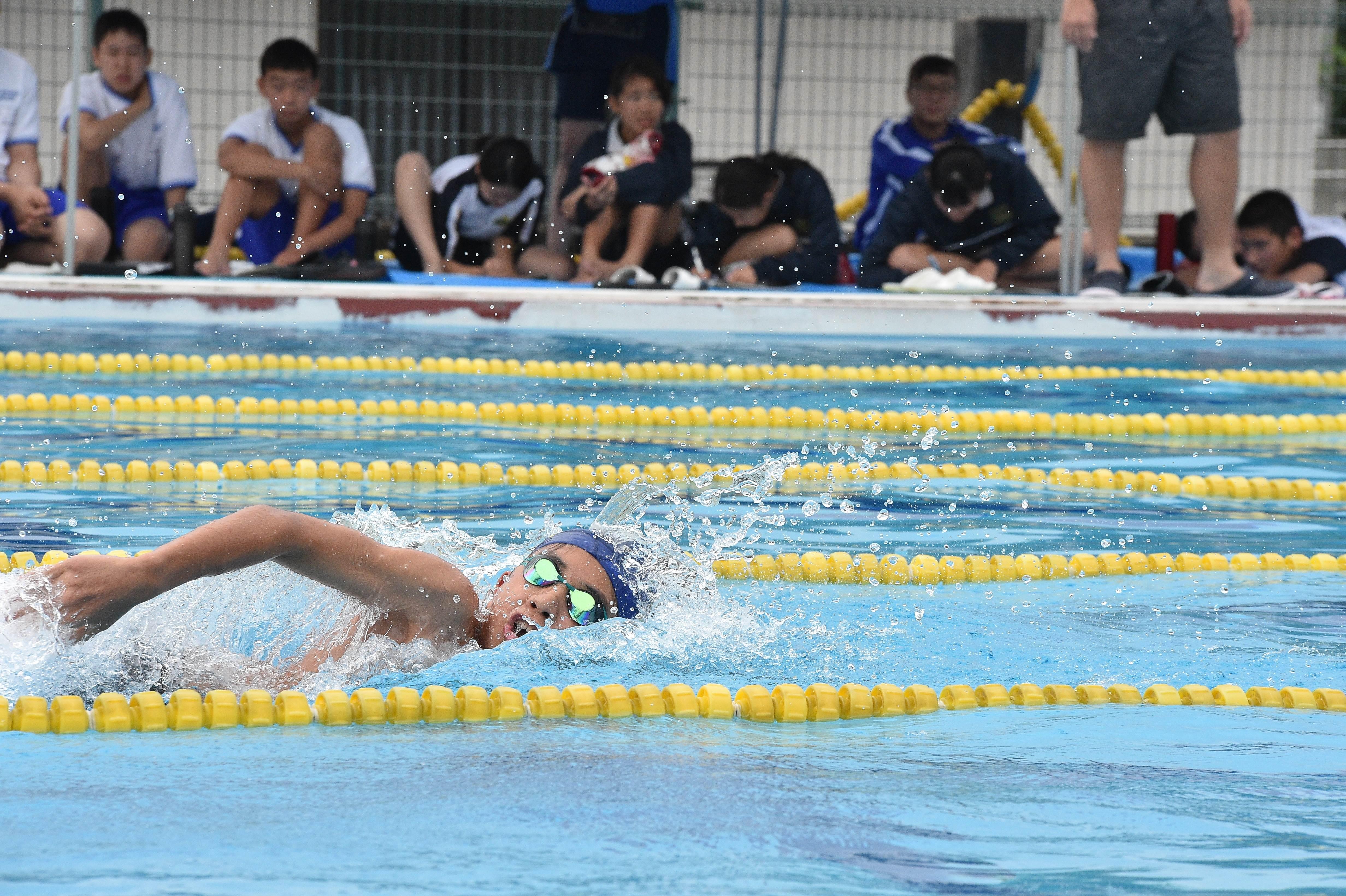 水泳 (142)