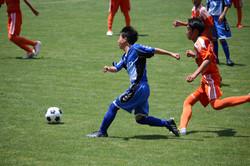 サッカー (379)