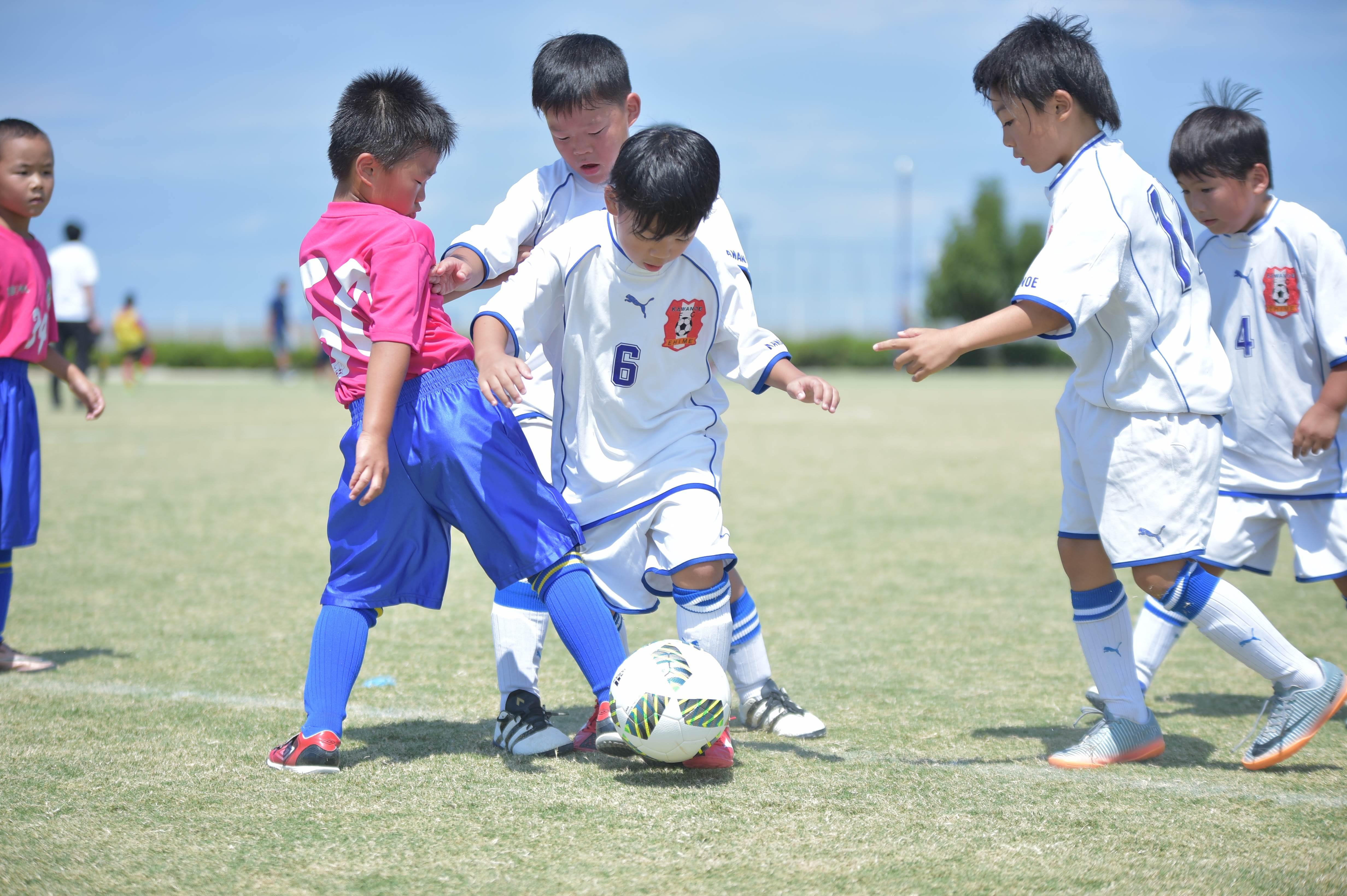 mini_soccer (396)