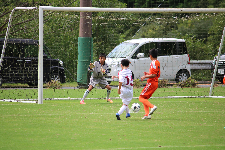 サッカー (448)