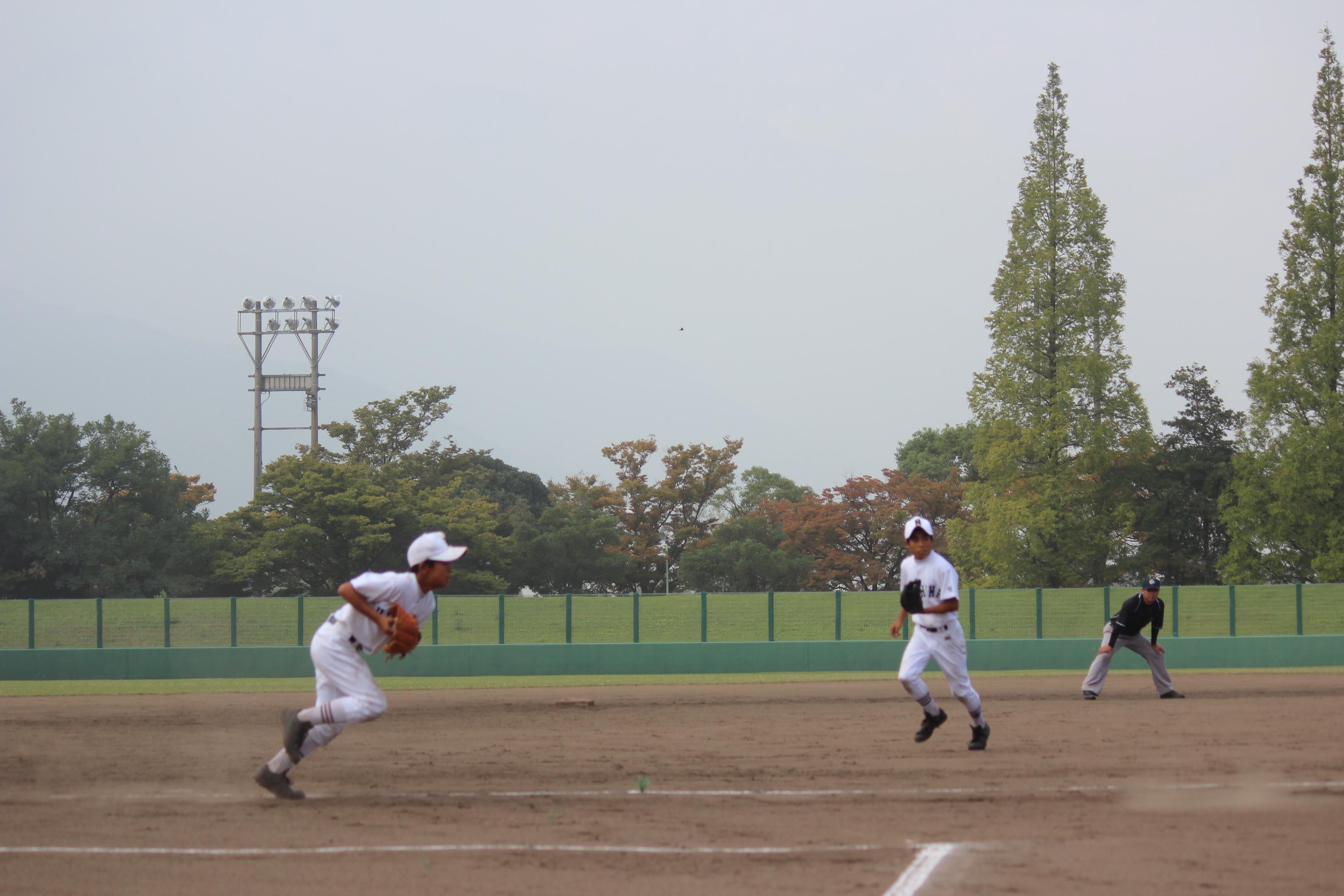 野球 (431)