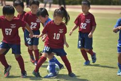 mini_soccer (687)