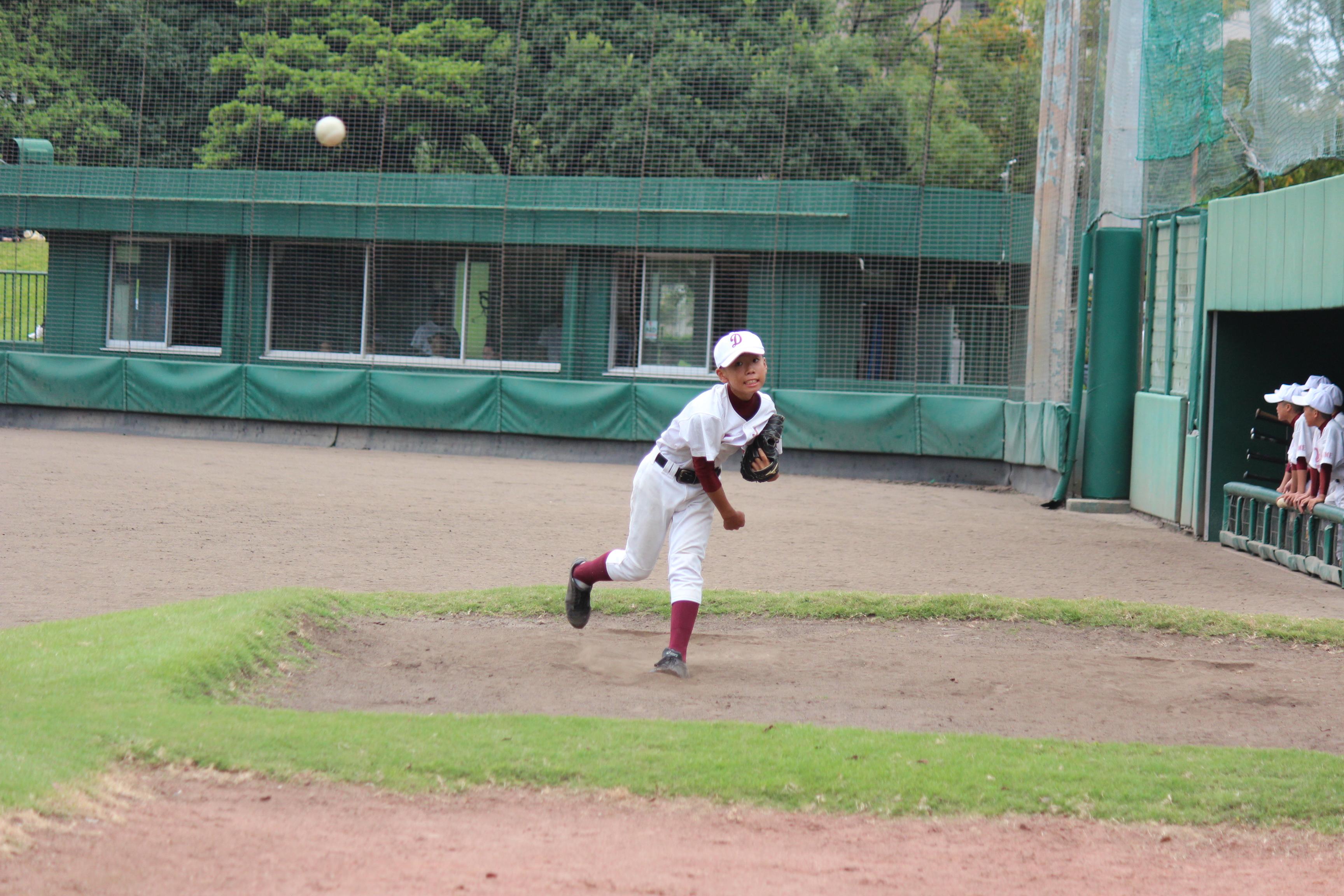 野球 (218)