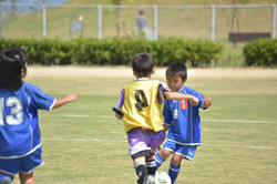 mini_soccer (642)