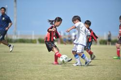mini_soccer (351)