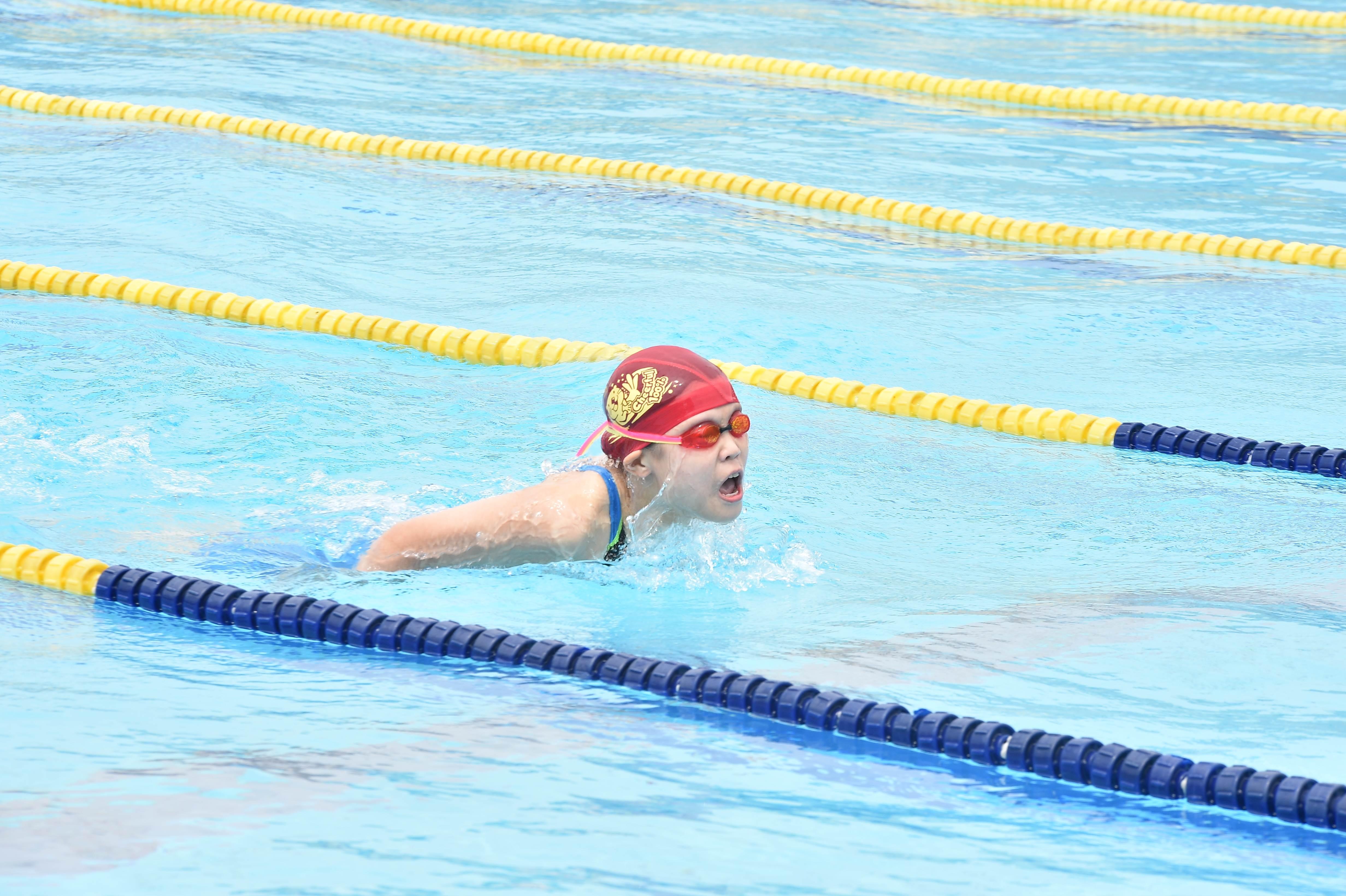 水泳 (24)