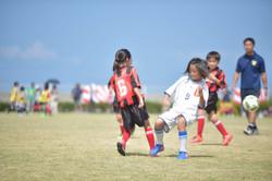 mini_soccer (317)