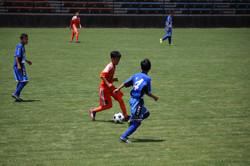 サッカー (443)