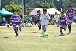mini_soccer (501)