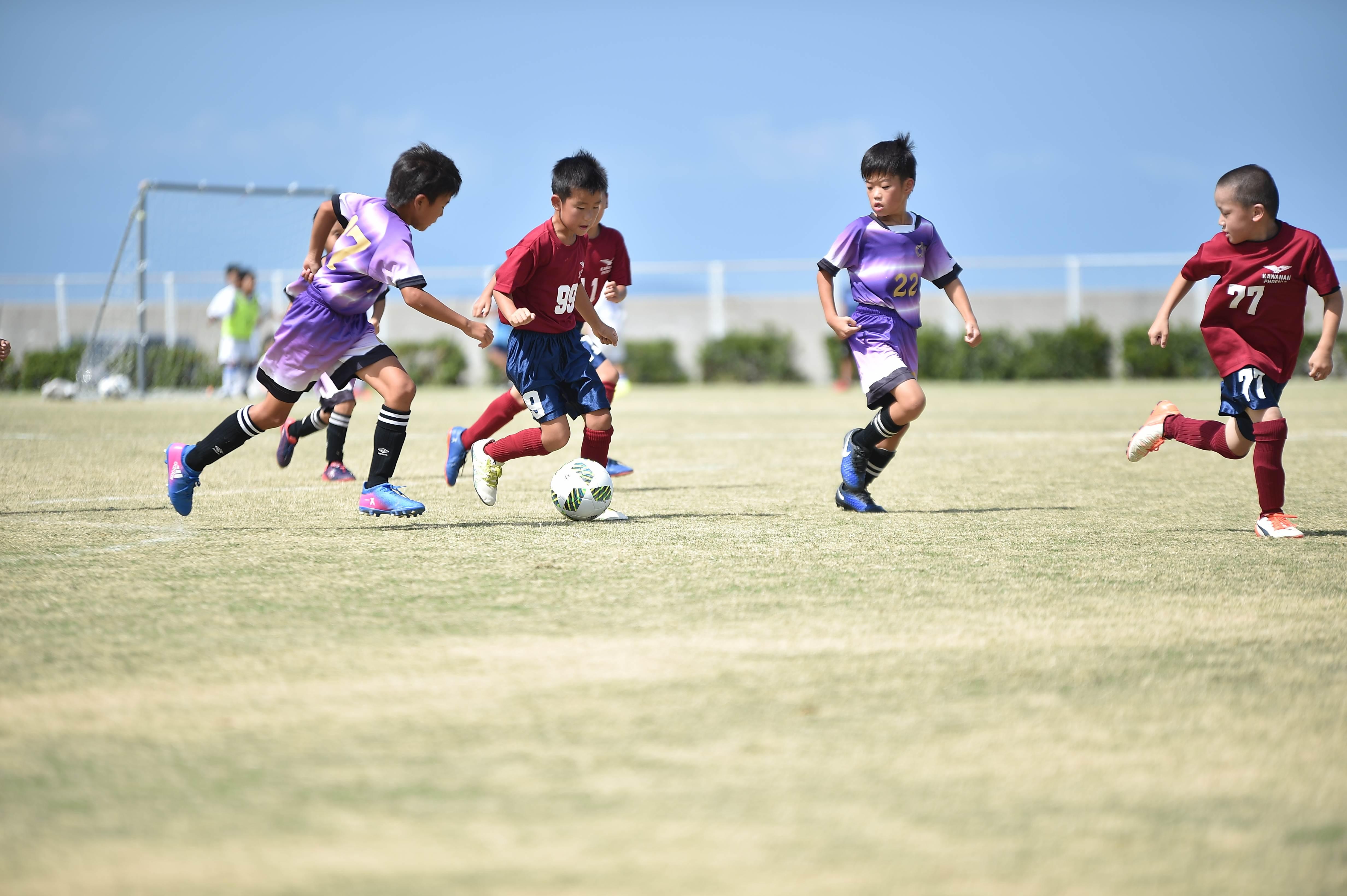 mini_soccer (301)