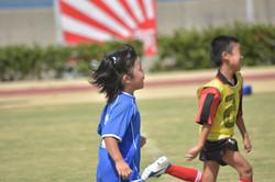mini_soccer (635)