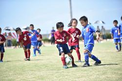 mini_soccer (520)