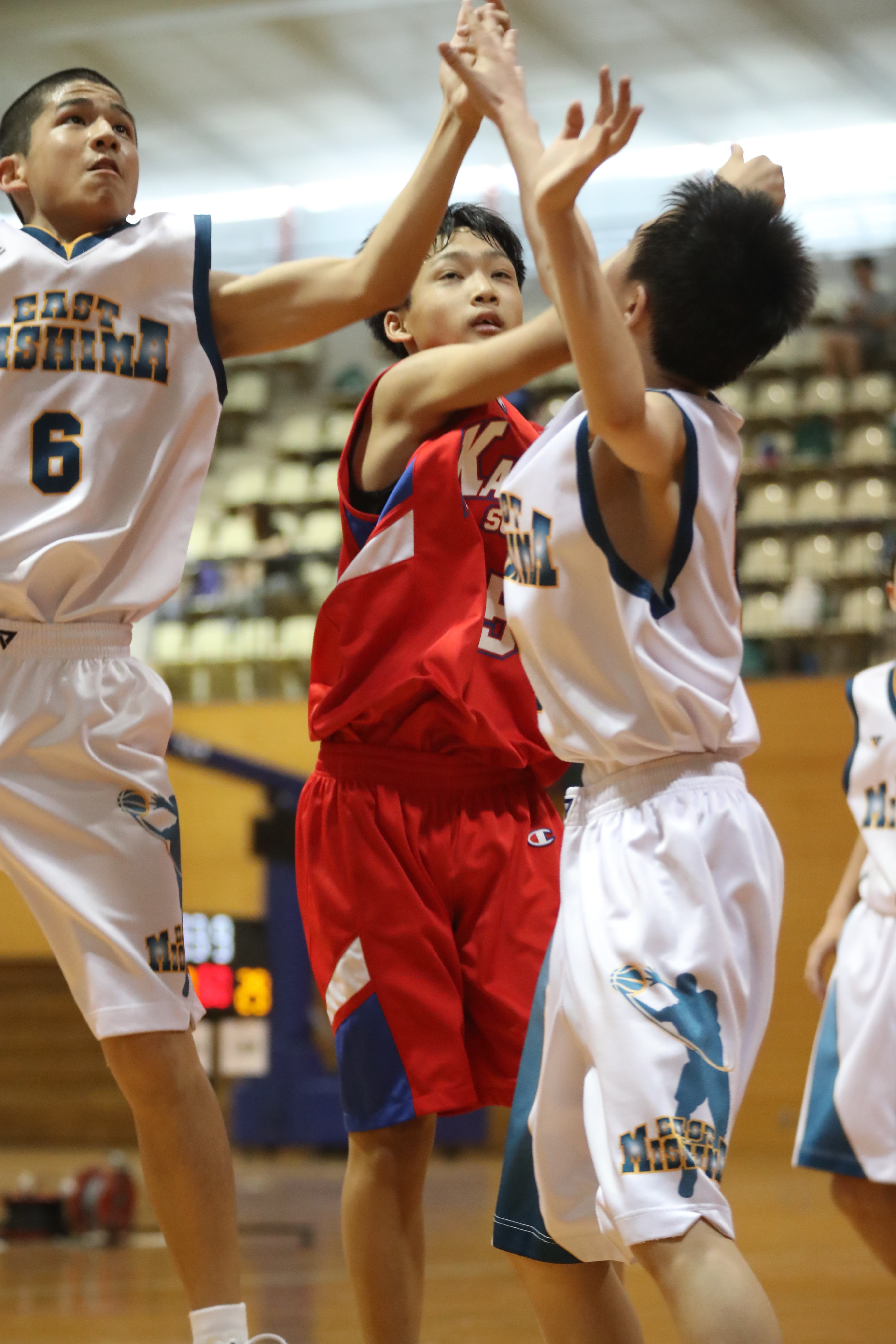 バスケット (28)