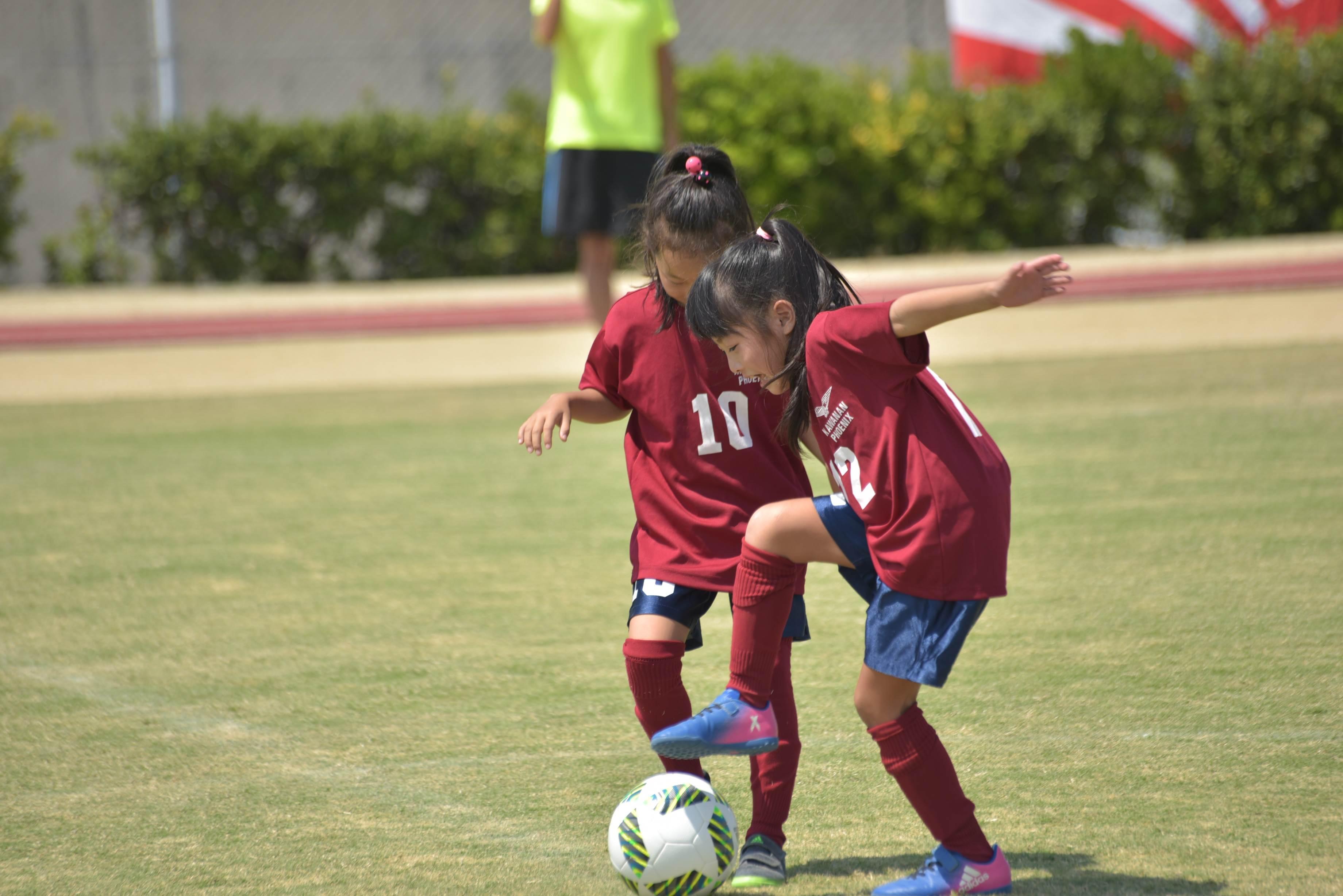 mini_soccer (674)