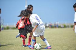 mini_soccer (358)