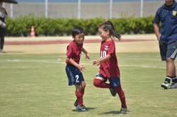 mini_soccer (651)