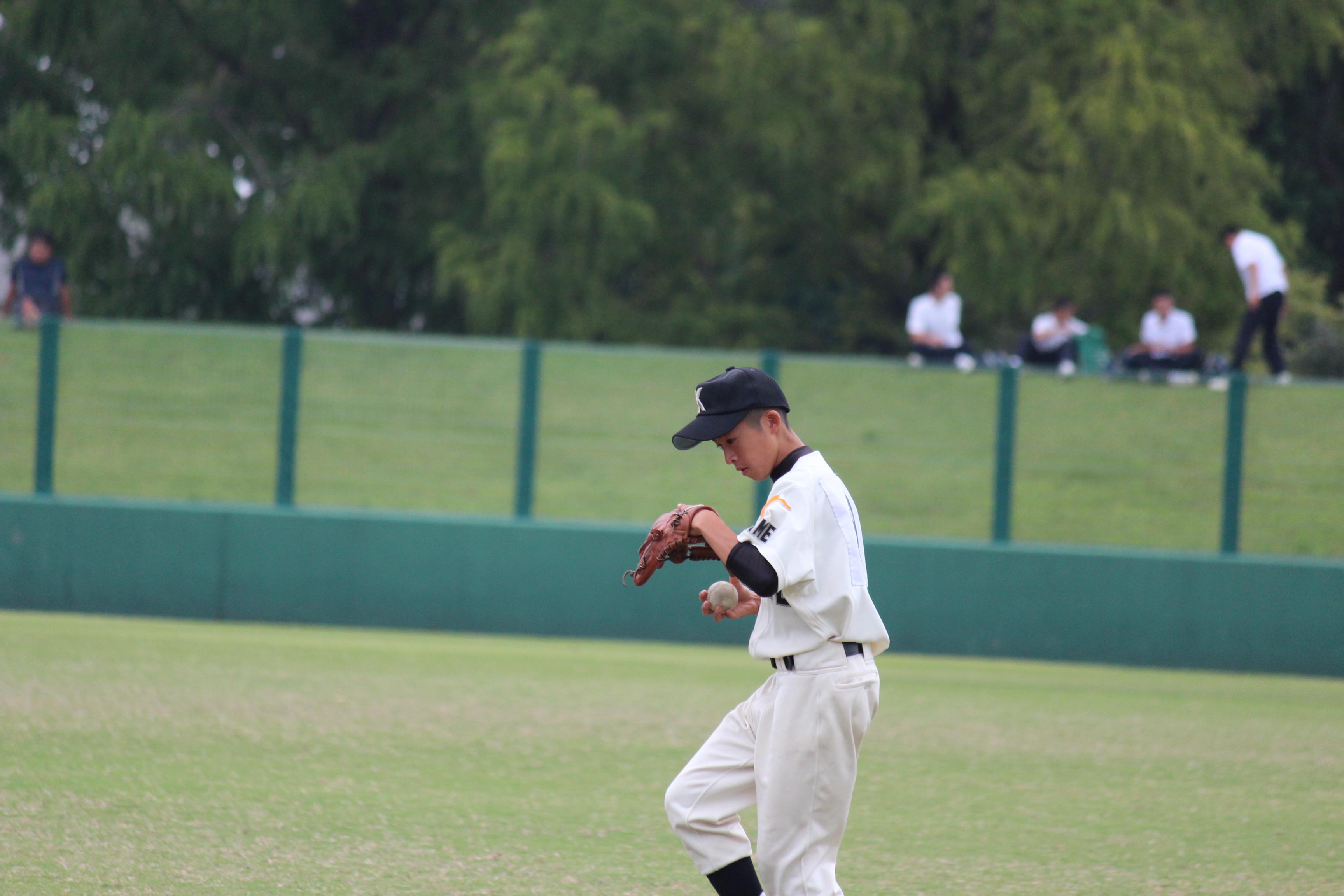 野球 (534)
