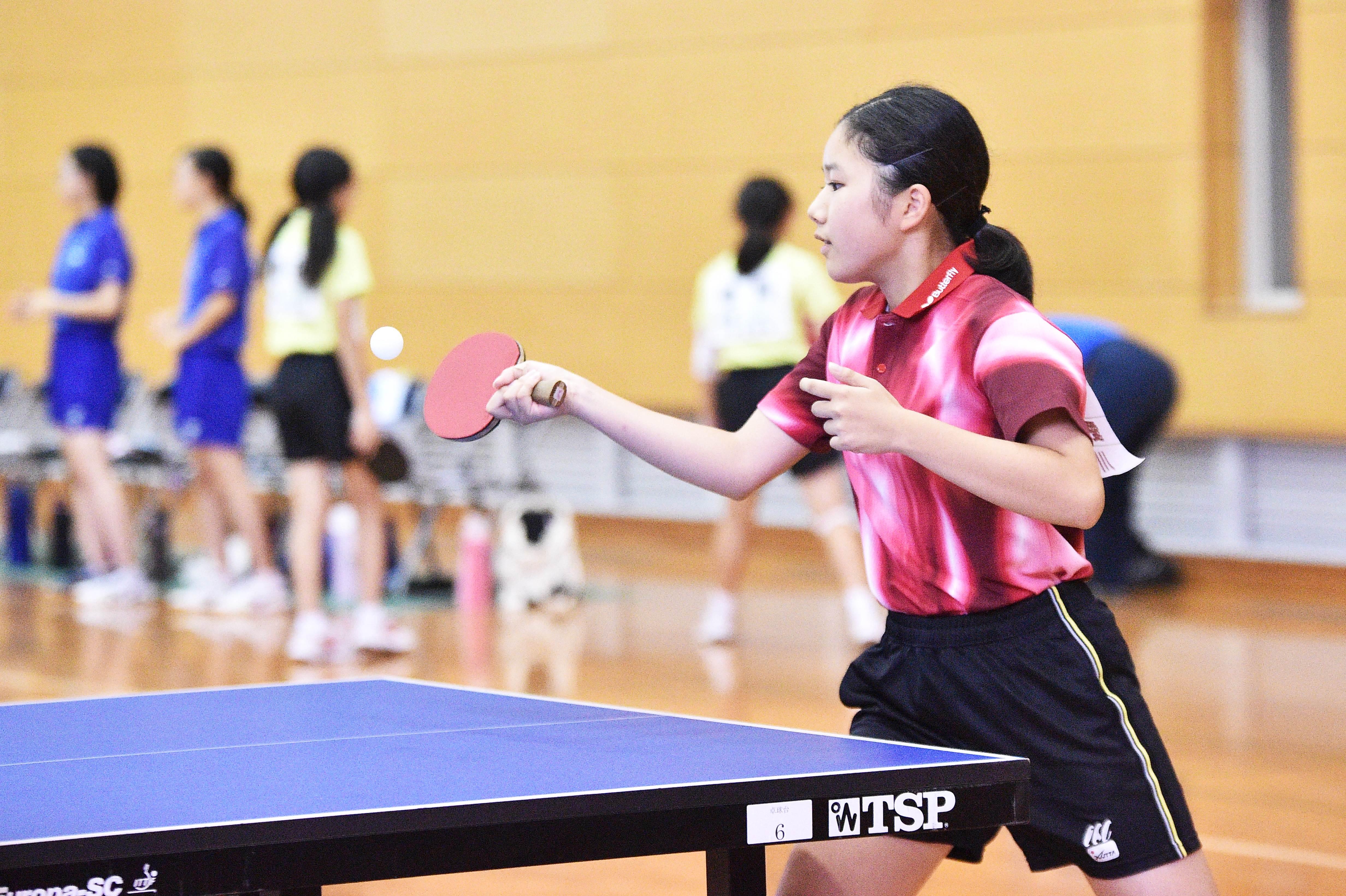 table_tennis (71)