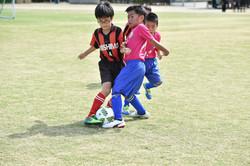 mini_soccer (163)