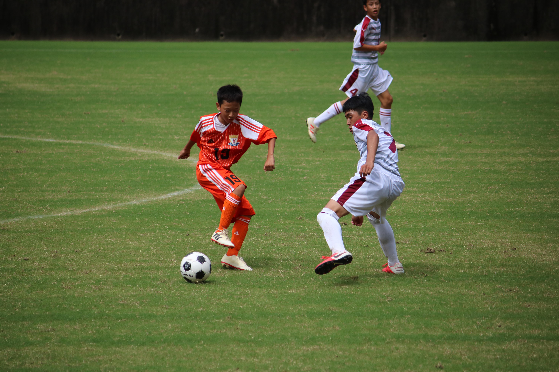 サッカー (428)