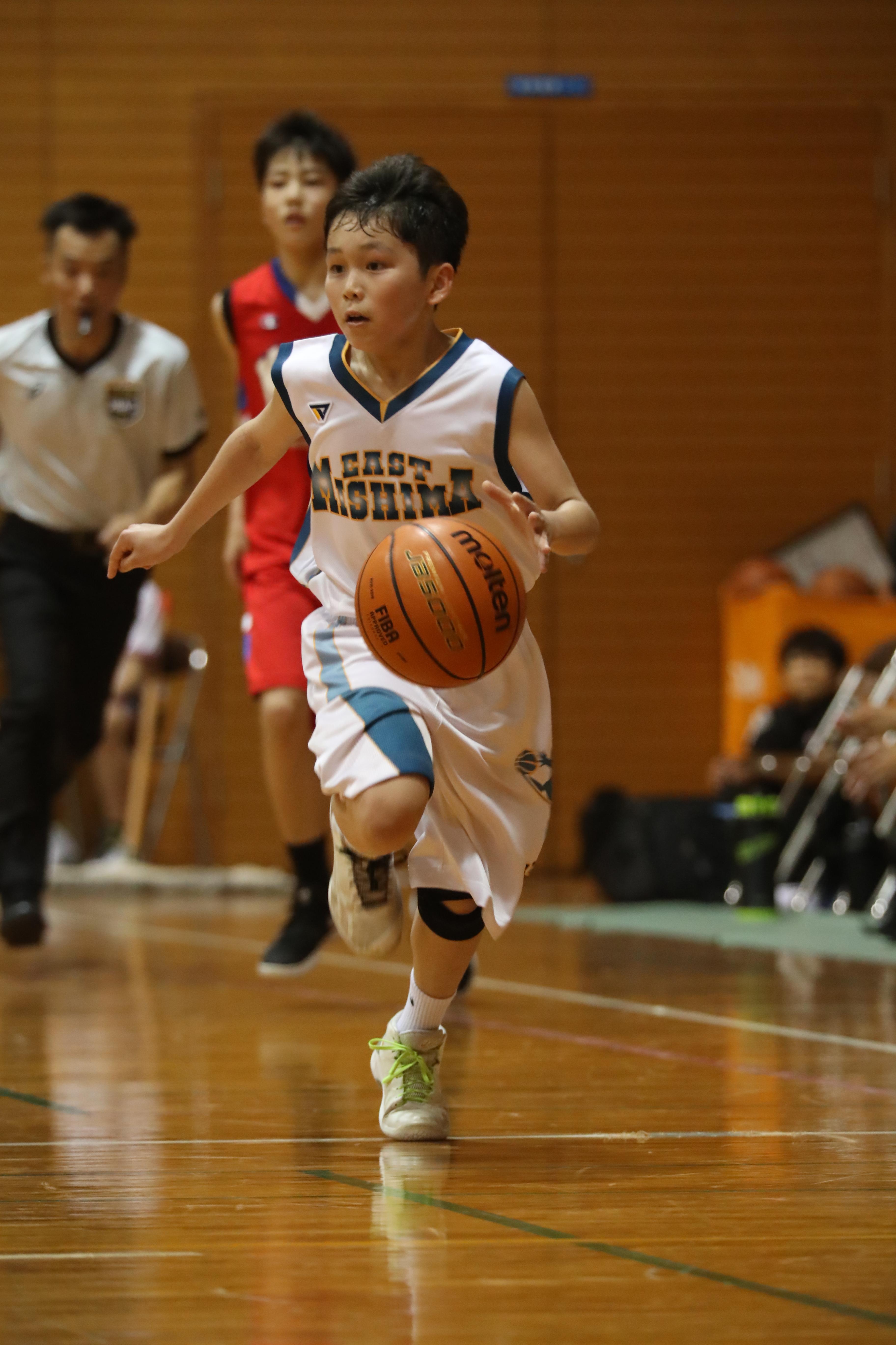 バスケット (48)