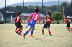 mini_soccer (172)