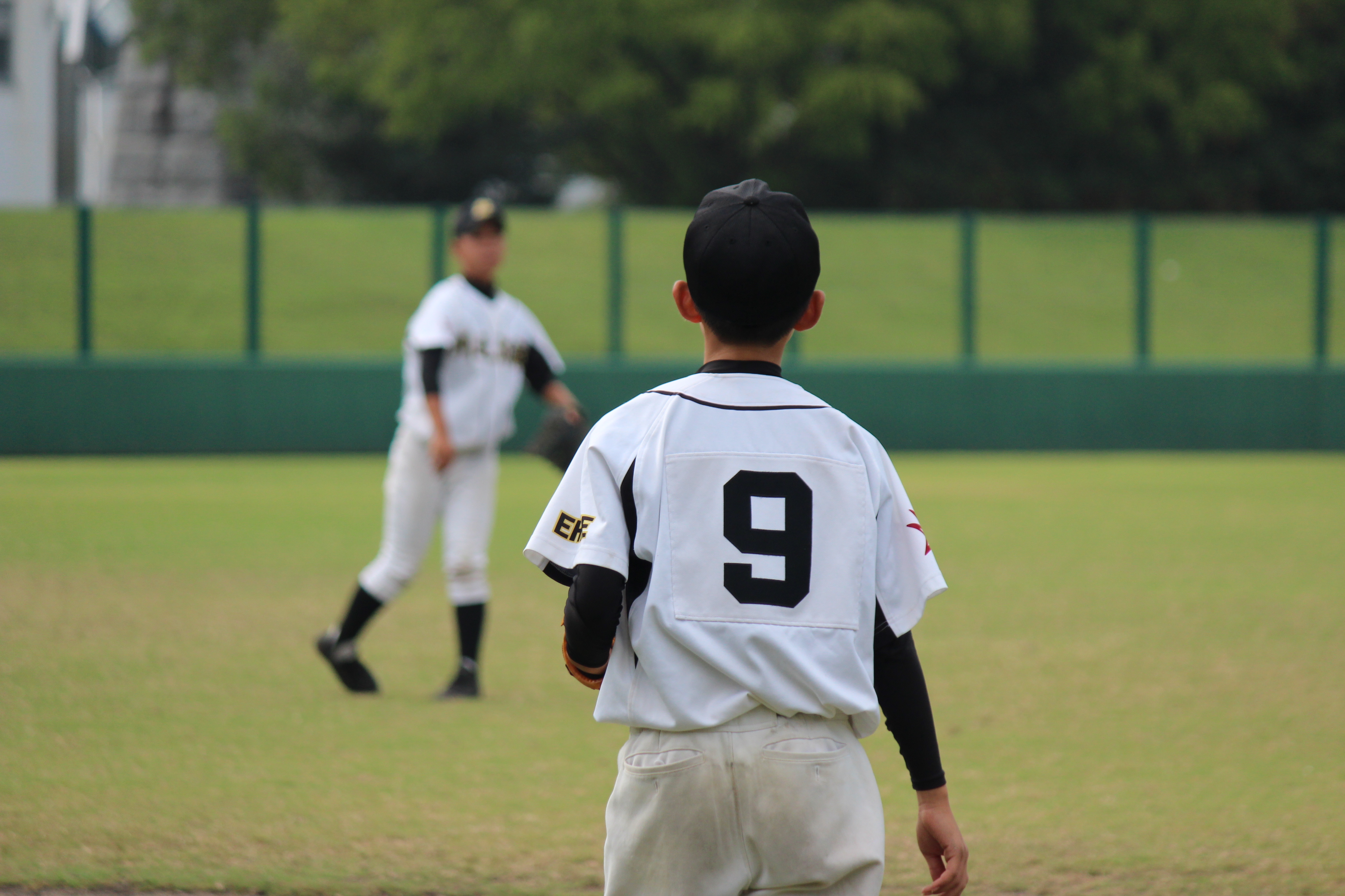 野球 (494)