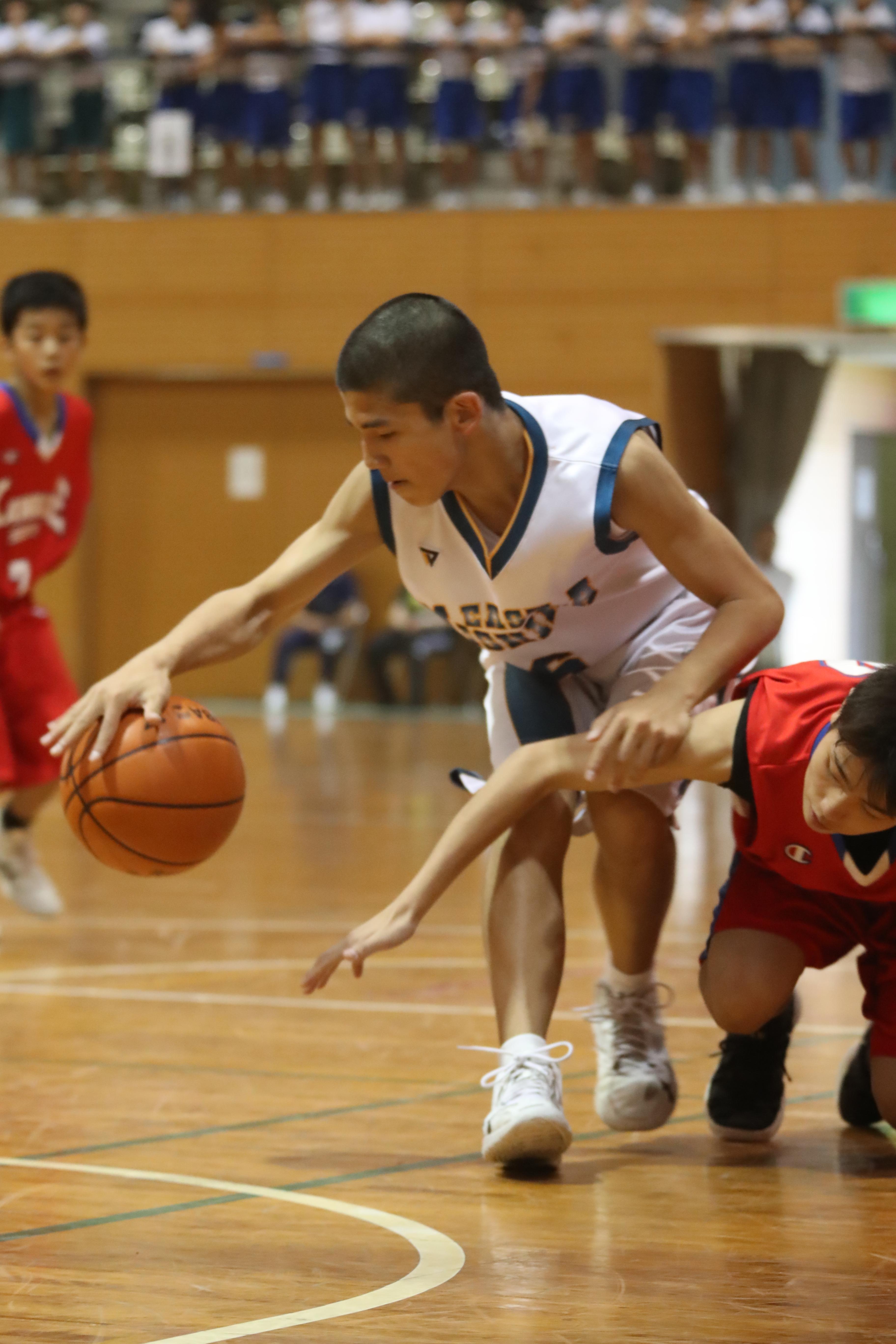 バスケット (6)